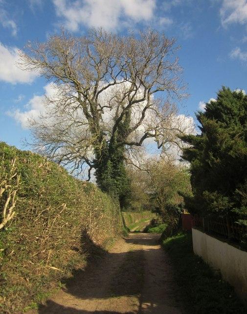 Kingswood Lane, Markington
