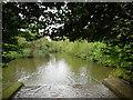 TQ8353 : River Len in Leeds Castle Grounds by Paul Gillett