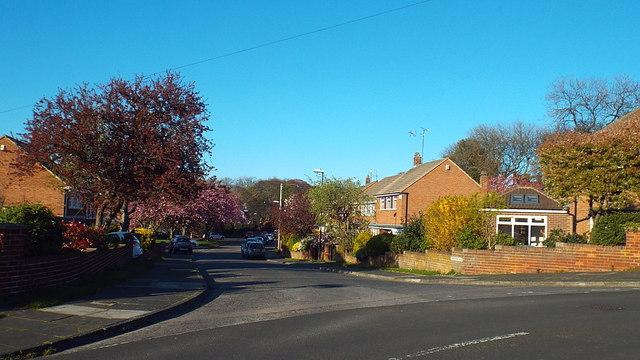 Lambourne Road, Sunderland