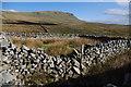 SD8274 : Sheepfold, Horton Moor by Ian Taylor