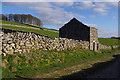 SD8172 : Ruined barn, Horton Scar Lane by Ian Taylor