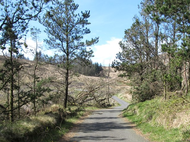 Approaching the 90 degree bend in the Camlough Wood Road