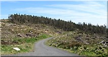 J0525 : Cut-over forest east of the 90 degree bend in the Camlough Wood Road by Eric Jones