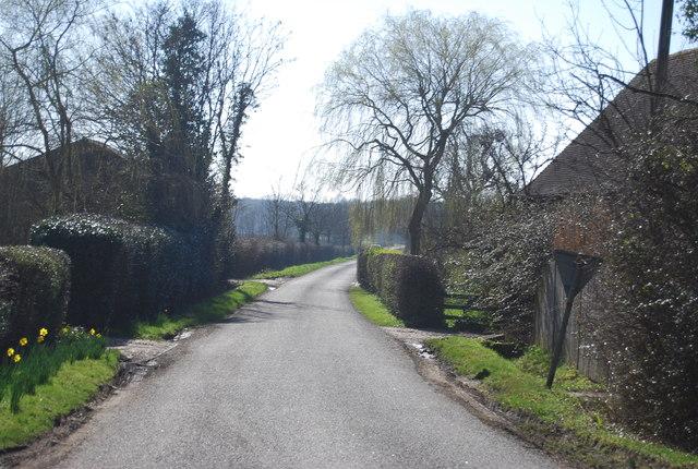 Greenhill Lane by N Chadwick