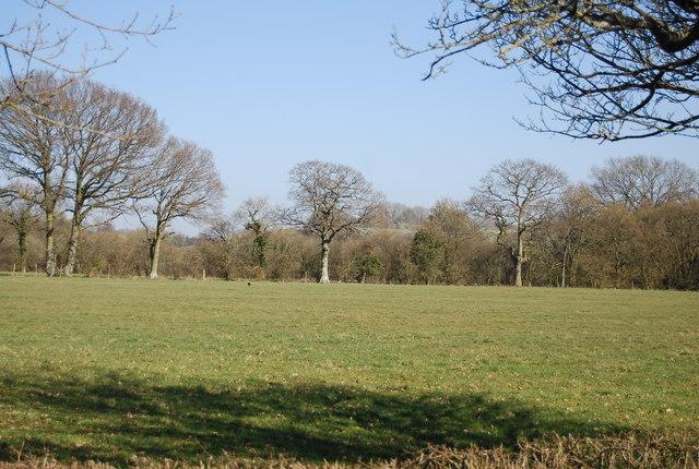 Farmland, Mundy Bois by N Chadwick