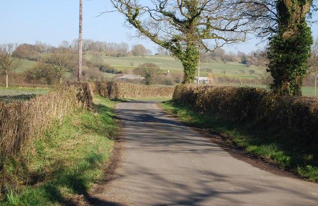 Elvey Lane by N Chadwick