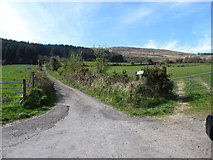 J0525 : The upper section of Carrivekeeney Road leading to Camlough Wood by Eric Jones