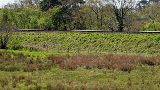 Railway embankment, Ballymena/Galgorm