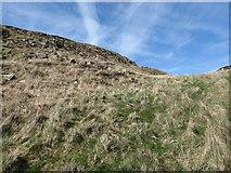 J0525 : Minor col below the summit of Camlough Mountain by Eric Jones