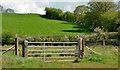D0804 : Field gate, Ballymena by Albert Bridge