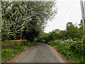 TM4089 : Lodge Farm Lane & Barsham Old Bridge by Adrian Cable