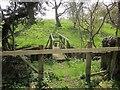 SE2651 : Footbridge over Crimple Beck by Derek Harper