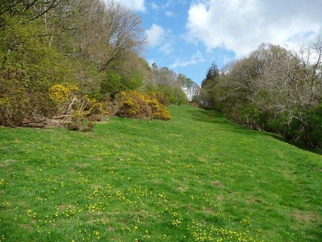 Bridleway traversing Robin Hood Wood