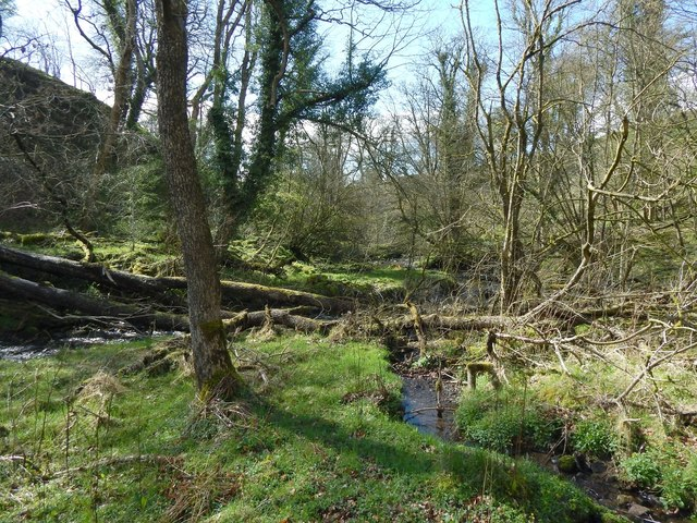 Tributary flowing into the Murroch Burn