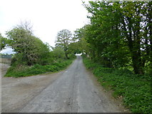 C3322 : Road at Baylet, Inch Island by Kenneth  Allen