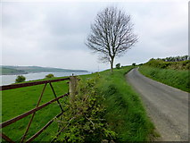 C3322 : Road at Corcannon, Inch Island by Kenneth  Allen