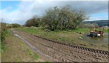 NS3878 : Site of Nether Dalquhurn Farm by Lairich Rig