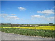 SE8565 : Over  fields  to  Wharram  Percy  Quarry by Martin Dawes