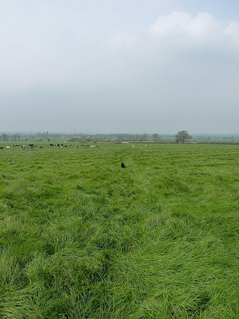 Footpath near Haughmond Abbey