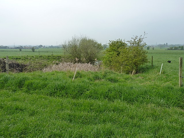 Pond north of Hillside Farm