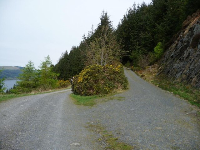 Parting of the ways, Brock Crag, Dodd Wood