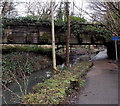 SO0102 : Low bridge over a canal path, Cwmbach by Jaggery