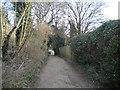 SK6444 : Bridle Road, Burton Joyce by Richard Vince