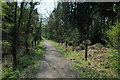 SO6311 : Cycle track at Great Saintlow by Philip Halling