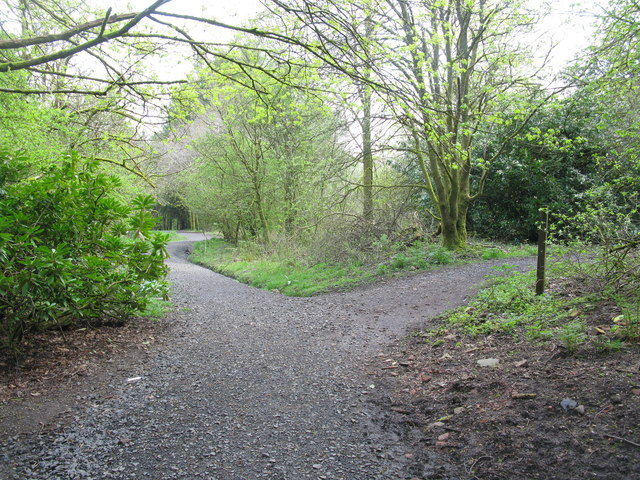 Junction of Paths on the Tannahill Walkway in Glen Park