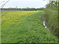 SK7436 : River Whipling near Granby by Alan Murray-Rust