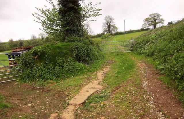 Path near Lower Aisholt