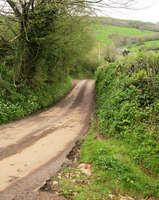 Lane to Lower Aisholt