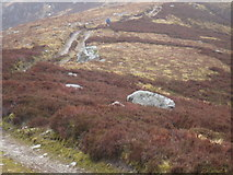 NO3978 : Hill Track on Shank of Inchgrundle by Douglas Nelson