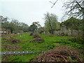 SW7936 : Enys Gardens - walled garden by Chris Allen