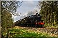 NX1665 : Steam train excursion near New Luce by David Baird