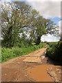 ST2141 : Farm Lane by Derek Harper