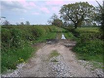 SU1091 : South Meadow Lane by Vieve Forward