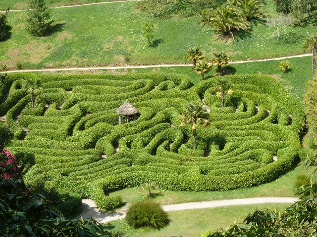 Glendurgan Gardens - maze