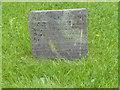 SK6733 : Belvoir Angel, St Margaret's church yard, Owthorpe by Alan Murray-Rust
