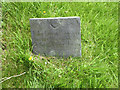 SK6733 : Belvoir Angel, St Margaret's church yard, Owthorpe by Alan Murray-Rust