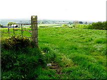 H7480 : An open field, Muntober by Kenneth  Allen