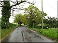 TM3992 : Yarmouth Road, Geldeston by Adrian Cable