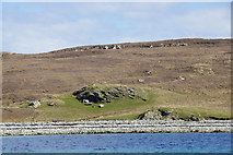 HU5999 : Headland at the west end of Uyea by Mike Pennington