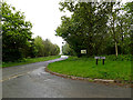 TM4196 : Thurlton Road, Pockthorpe by Adrian Cable