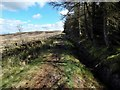 NS3582 : Path to Darleith Muir by Lairich Rig