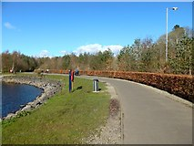 NS3882 : Path at Loch Lomond Shores by Lairich Rig