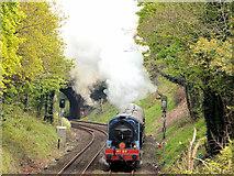 J2764 : Steam locomotive no 85, Lisburn - May 2014(1) by Albert Bridge
