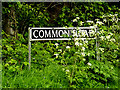 TM4693 : Common Road sign by Adrian Cable