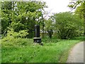 TM3996 : Roadside monument at Raveningham by Adrian S Pye