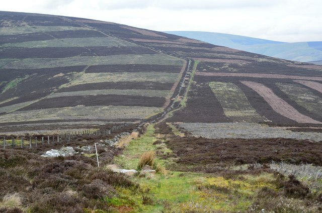 Col between Stony Knowe and Seathope Law